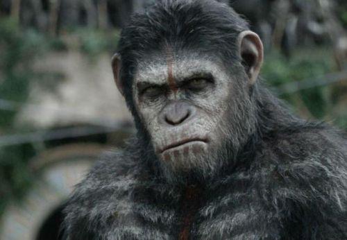 《猩球崛起3》游戏制作中 将和电影同步上线