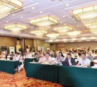 動漫IP衍生品聯盟成立 企業抱團發展