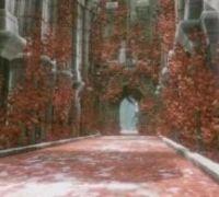 《尼尔:转生》手游开场动画公布